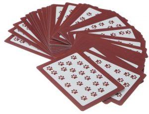 کارت های بازی فکری